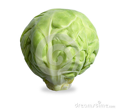 Single brussels sprout  on white with path