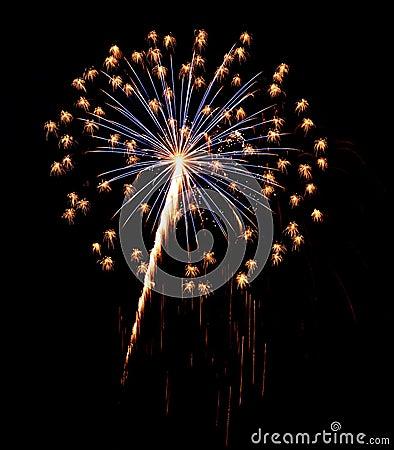 Free Single Burst Of Fireworks On A Black Background Royalty Free Stock Image - 25753976