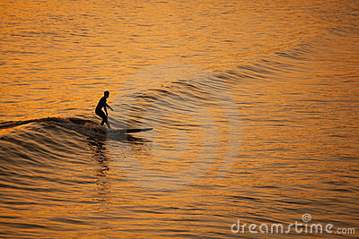 Single California surfer at sunset