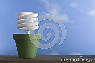 Single CFL Sprout Pot