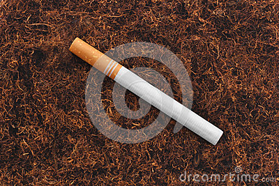 Single cigarette on tbacco texture background