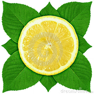 Single cross section of lemon with green leaf