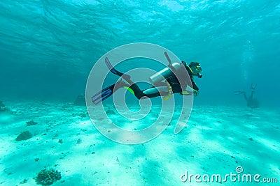 Single diver
