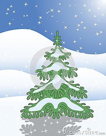 Single fir tree in winter snow