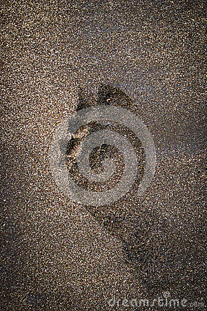 Single Footprint on Brown Beach Sand