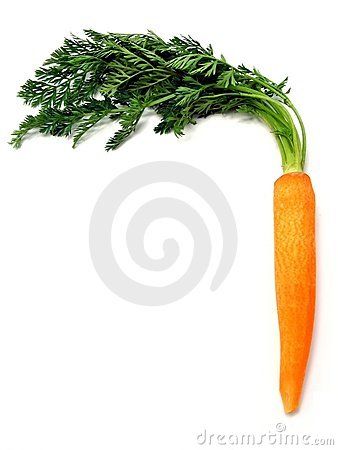A single fresh carrot with leaves