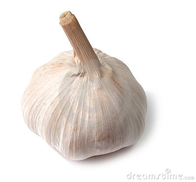 Free Single Garlic Bulb On White Stock Photography - 21435212