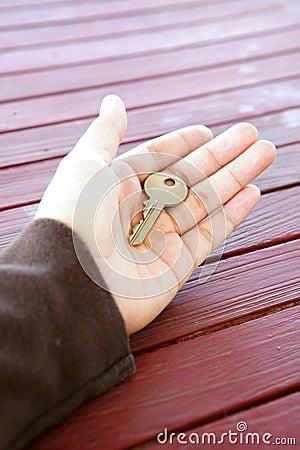 Single key in palm