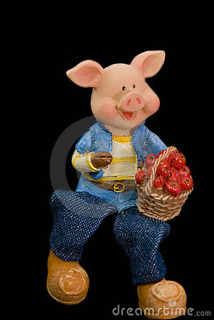 Single lucky pig