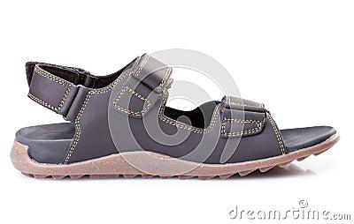 Single male summer sandal isolated on white