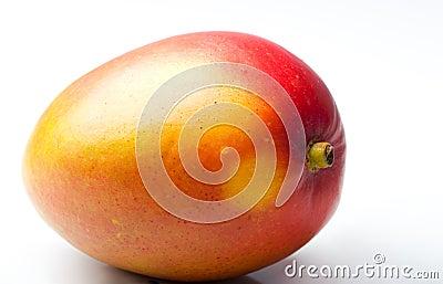Single mango fresh juicy ripe tropical fruit