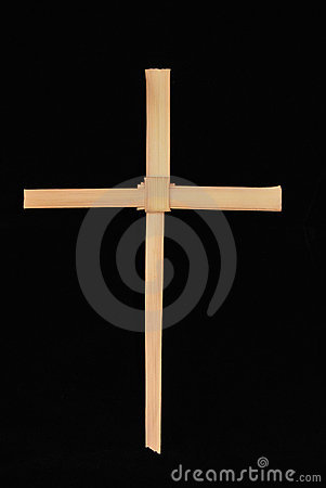 Single palm cross