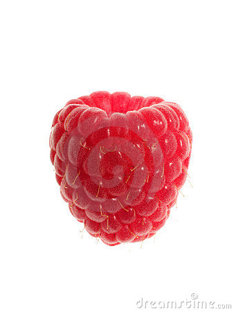 Single Raspberry Stock Photo - Image: 5341620