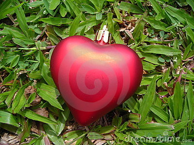 Single red heart against grass background