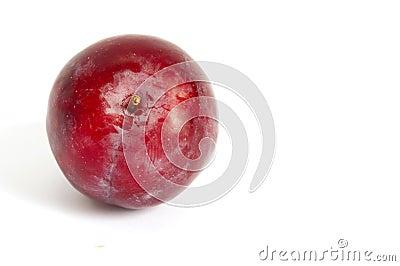 Single red plum