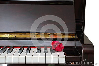 Single red rose on piano