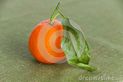 Single ripe orange on green napkin