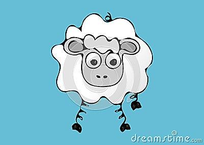 Single sheep.