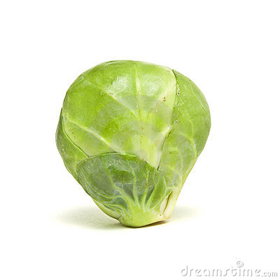 Single Sprout