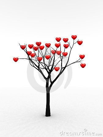 Single Tree With Love 10