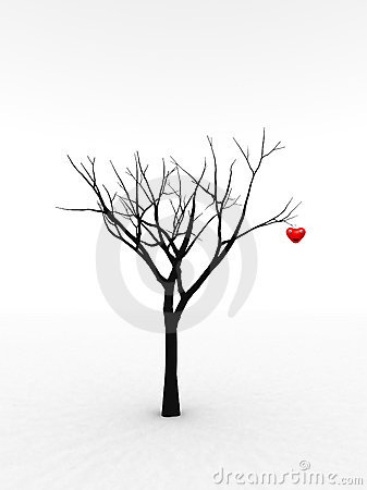Single Tree With Love