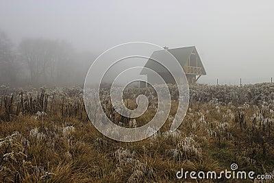 Single wooden hut on misty morning