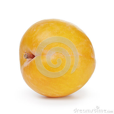 Free Single Yellow Plum Royalty Free Stock Photo - 40910975