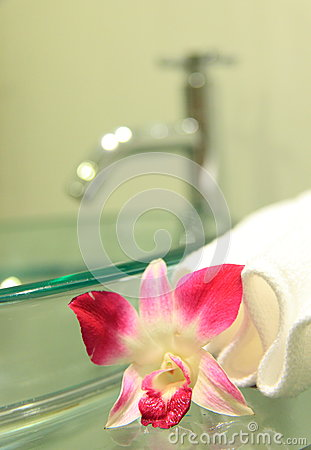 Sink, towels and orchid