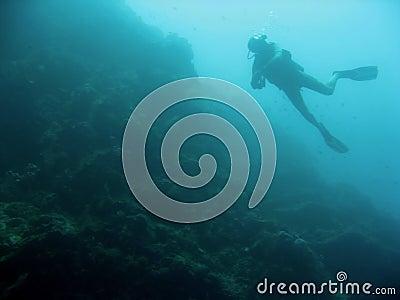 Sipadan wall scuba diver silhouette