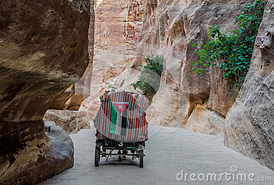 The siq path in nabatean city of  petra jordan