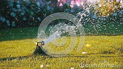 Sistema de extin??o de inc?ndios autom?tico do gramado no jardim com grama verde no movimento lento vídeos de arquivo