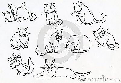 Sistema de gatos dibujados tinta