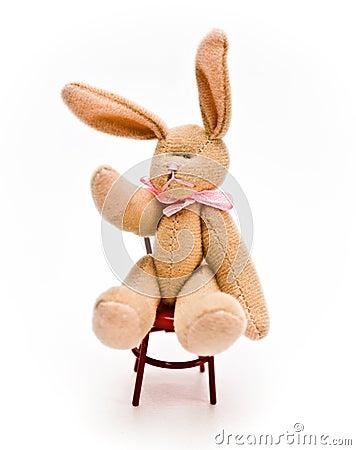Sitting Bunny Rabbit