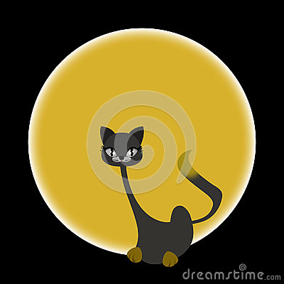 Sitting cat - Scary yellow eyes ...