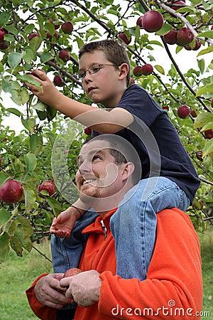 Sitting on Dad s shoulders