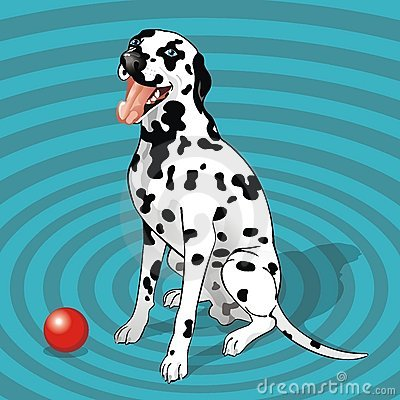 Sitting dalmatian with a ball