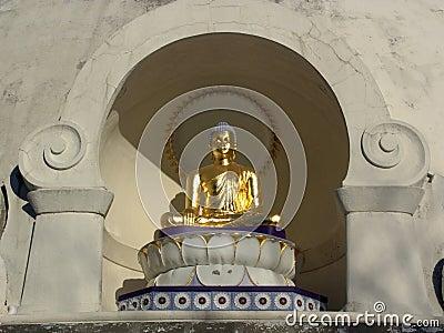 Sitting Golden Buddha