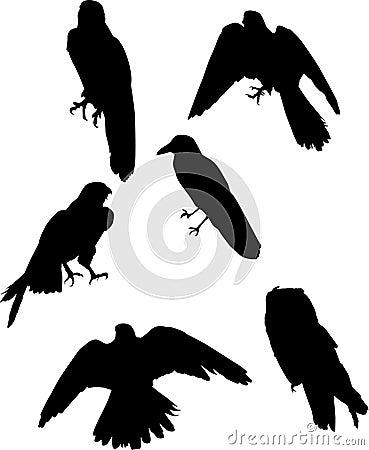 Six bird silhouettes