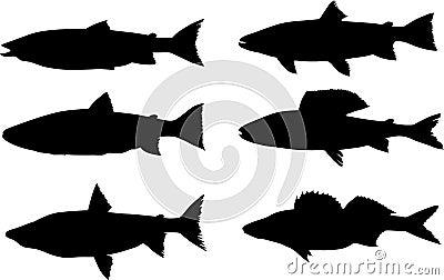Six predator fish silhouettes