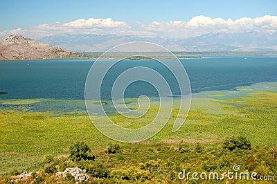 Gorgeous picturesque scene of Lake Skadar in Monte