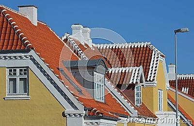 Skagen roofs