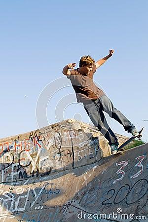 Free Skateboarding Stock Photography - 9603862