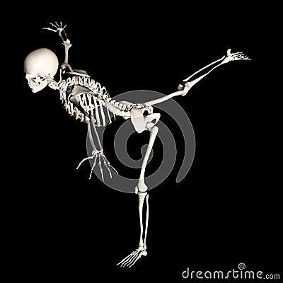 Skeleton 67