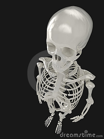 Skeleton from above