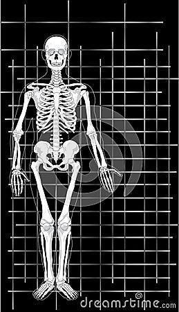 Skeleton Business Card 1