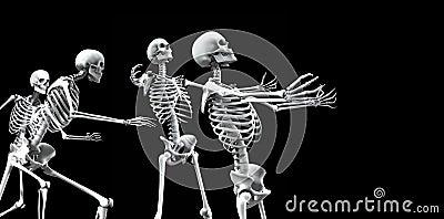 Skeleton Group 5