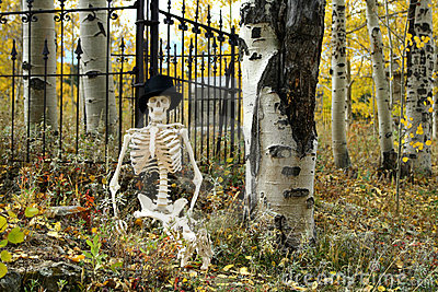 Skeleton and Iron Fence