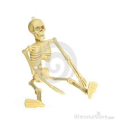 Skeleton isolated CLIPPING PATH