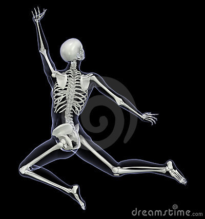 Skeleton in Motion 1
