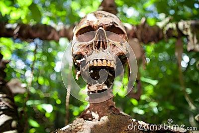 Skeleton skull sacrifice death